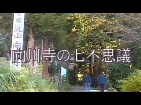 向川寺の七不思議