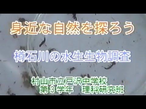 樽石川の水生生物調査